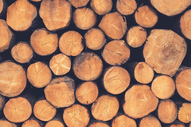 Die Holzbauingenieure Philosophie
